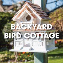 backyard-bird-cottage