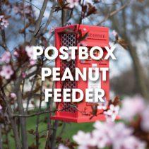 postbox-peanut-feeder