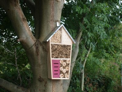 Insect Hotels - The Tower